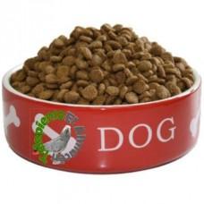 Alimento Perros